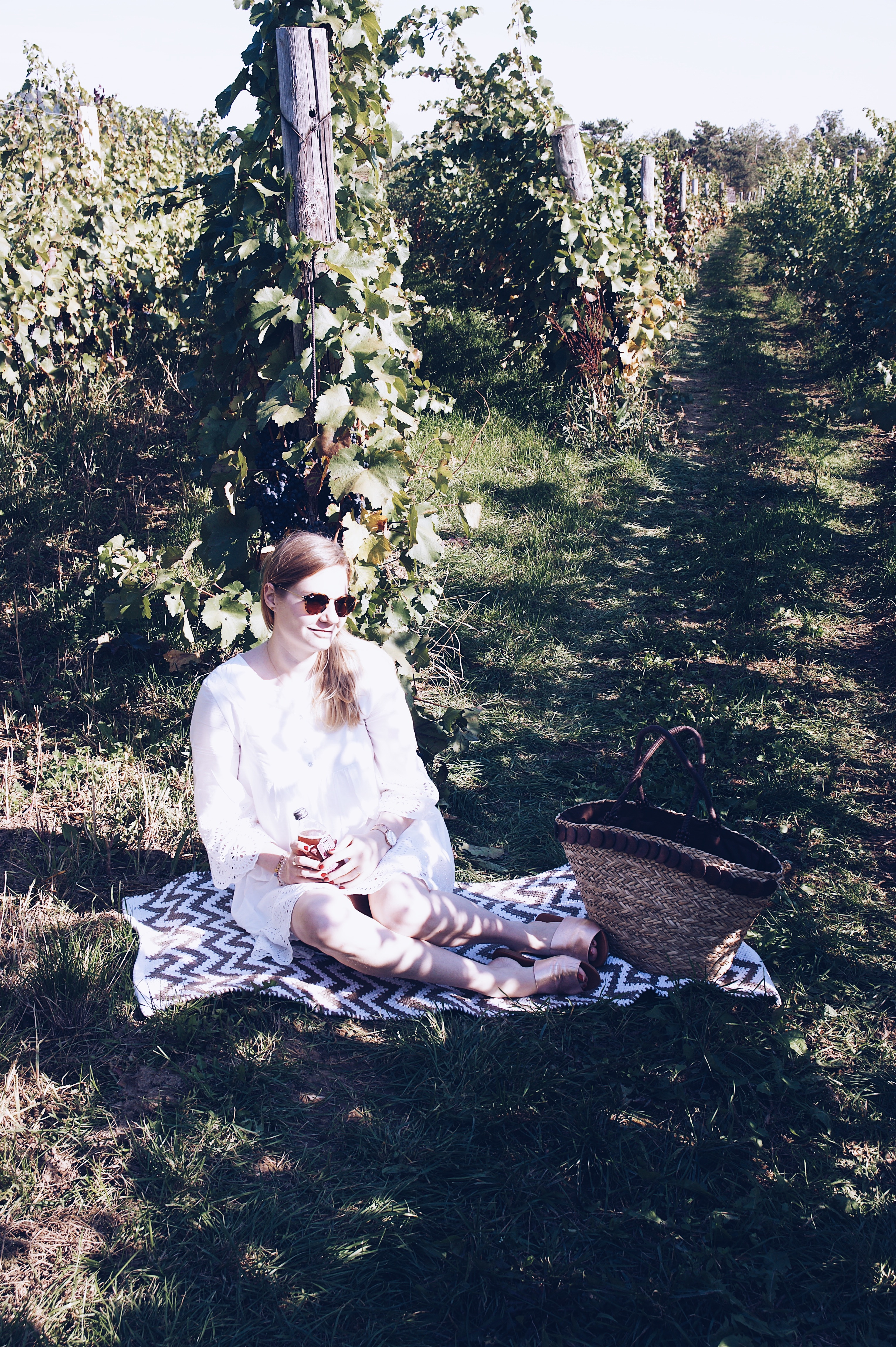 Weinlese, Picknick