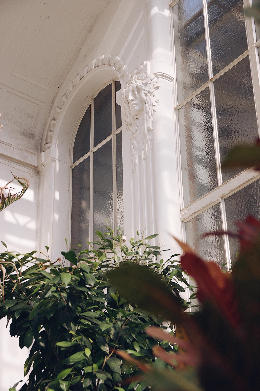 Schmetterlingshaus Wien
