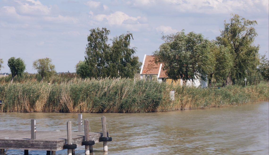 die frage des tages neusiedl am see