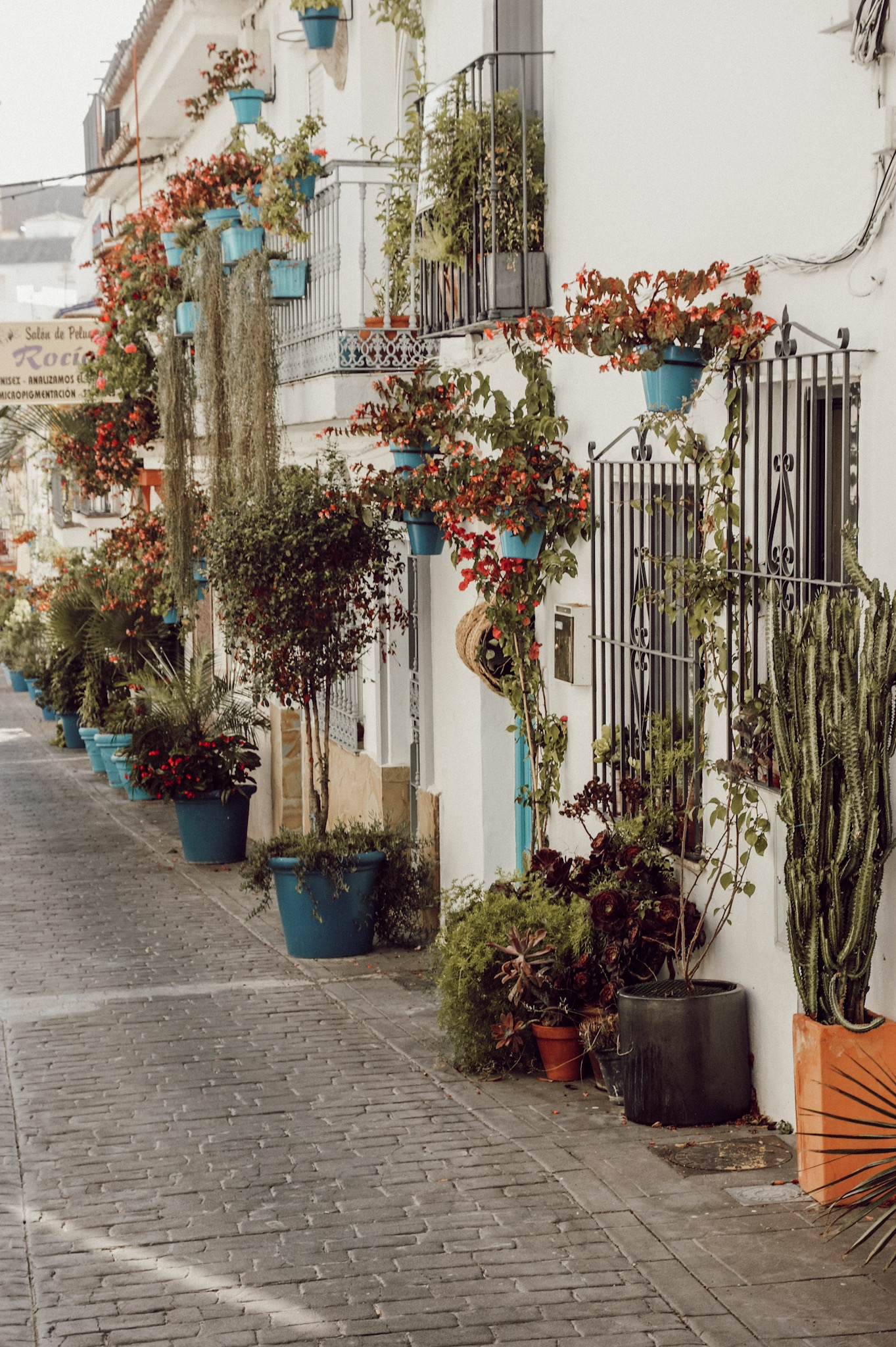 Estepona Andalusien