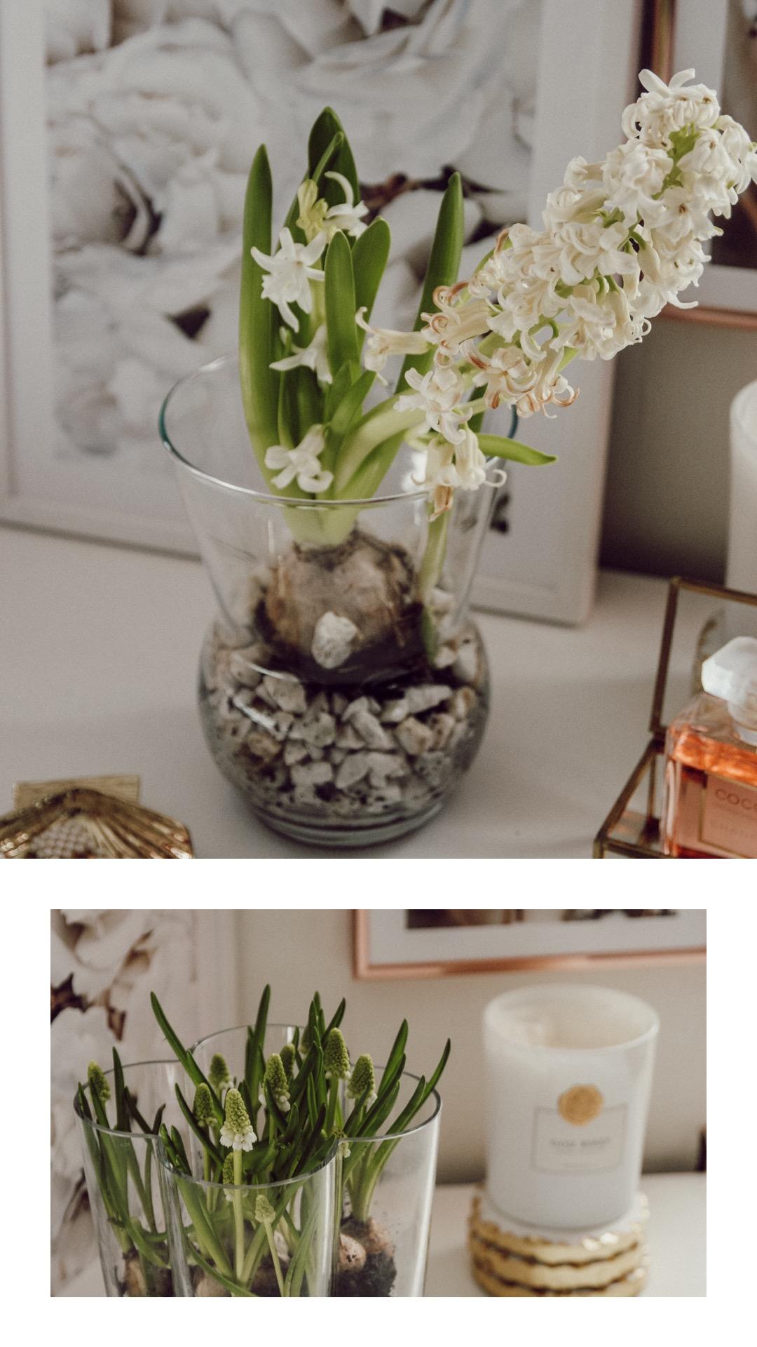 Frühlingsdeko im Glas, Hyazinthen im Glas Deko Frühling
