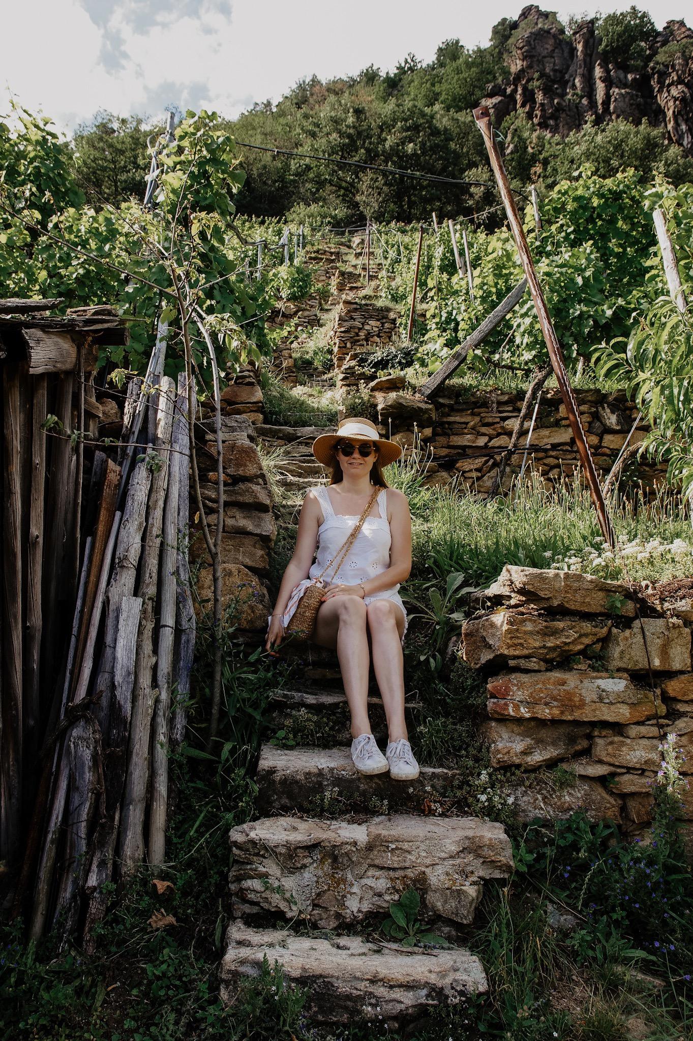 Wachau: Wanderung zum Aussichtspunkt in der Nähe der Kügerlwand
