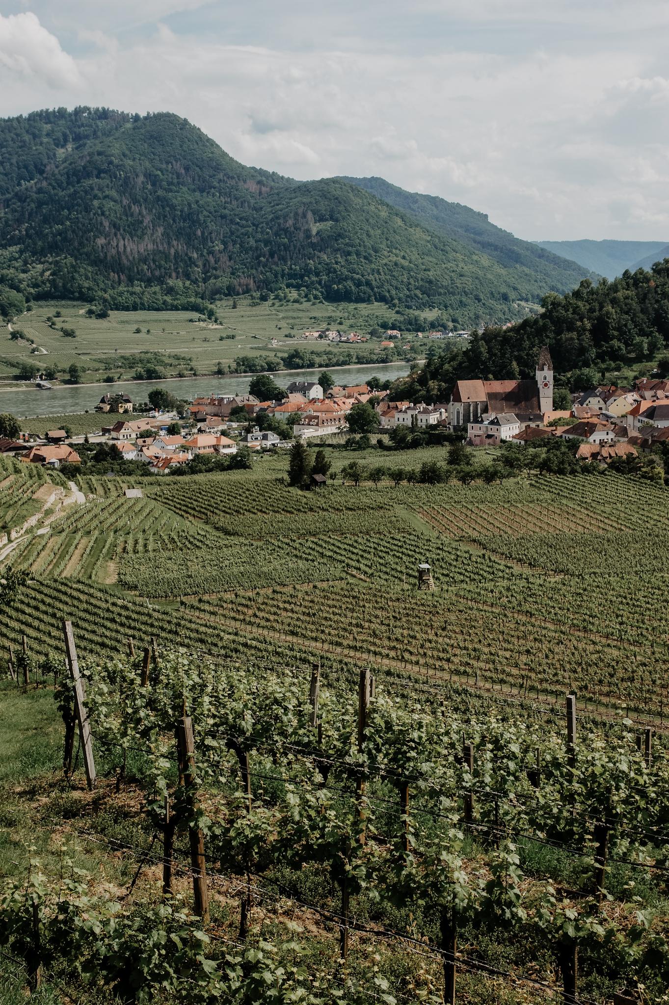 Wachau Spitz Wanderung Rotes Tor