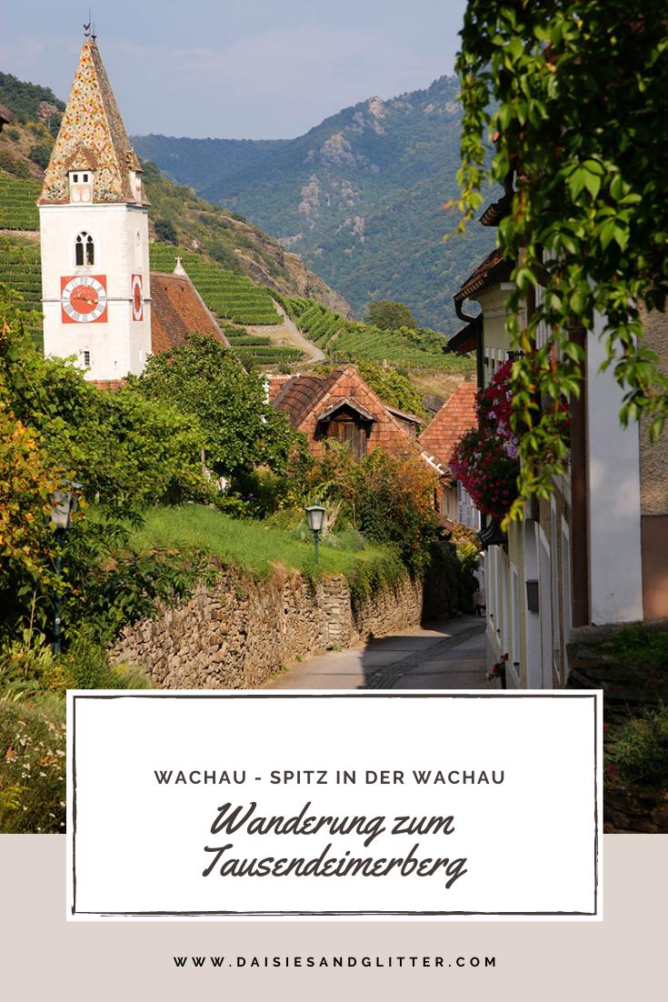 Wanderung Spitz Wachau Tausendeimerberg