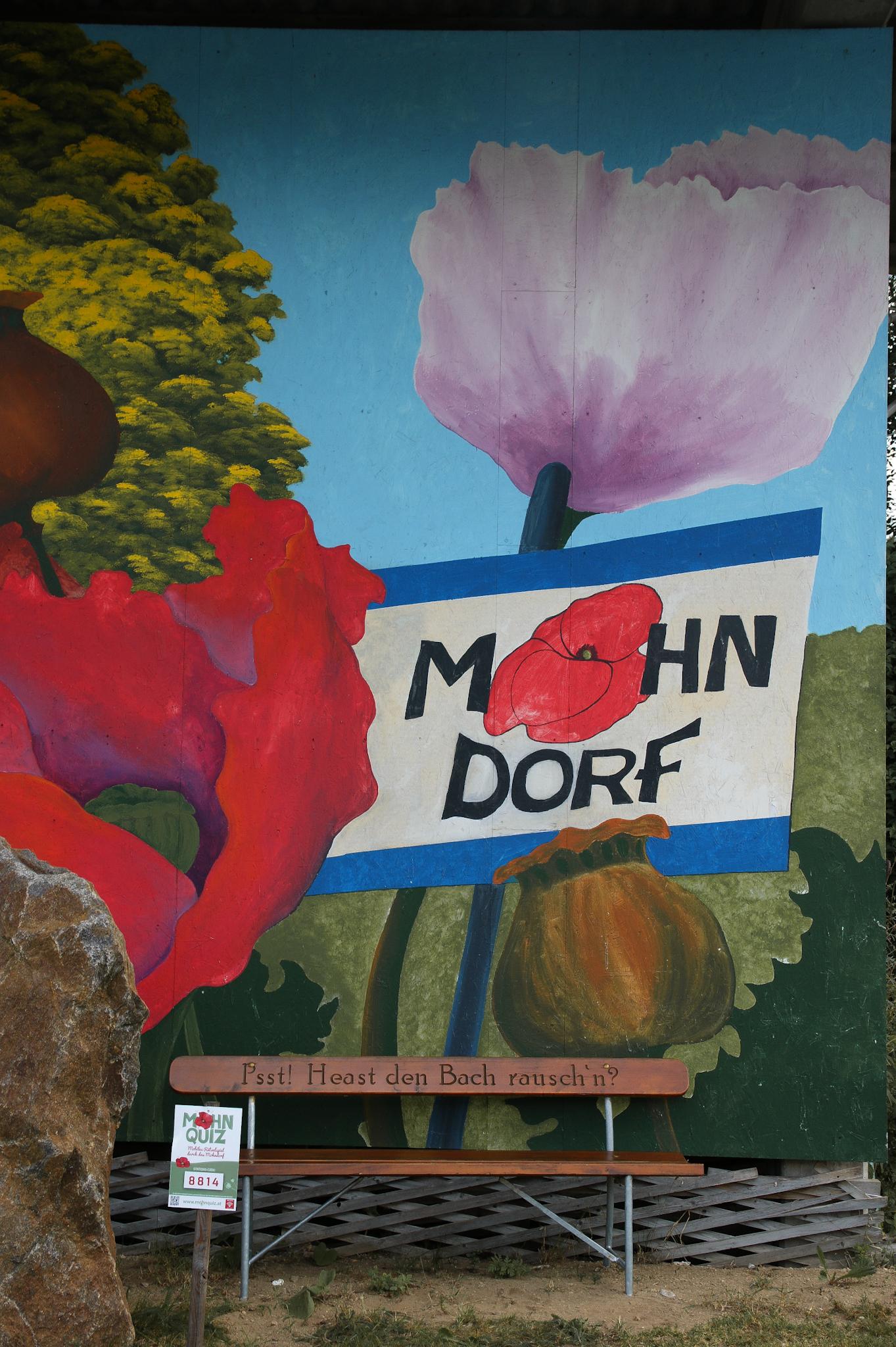Mohnfeld Armschlag