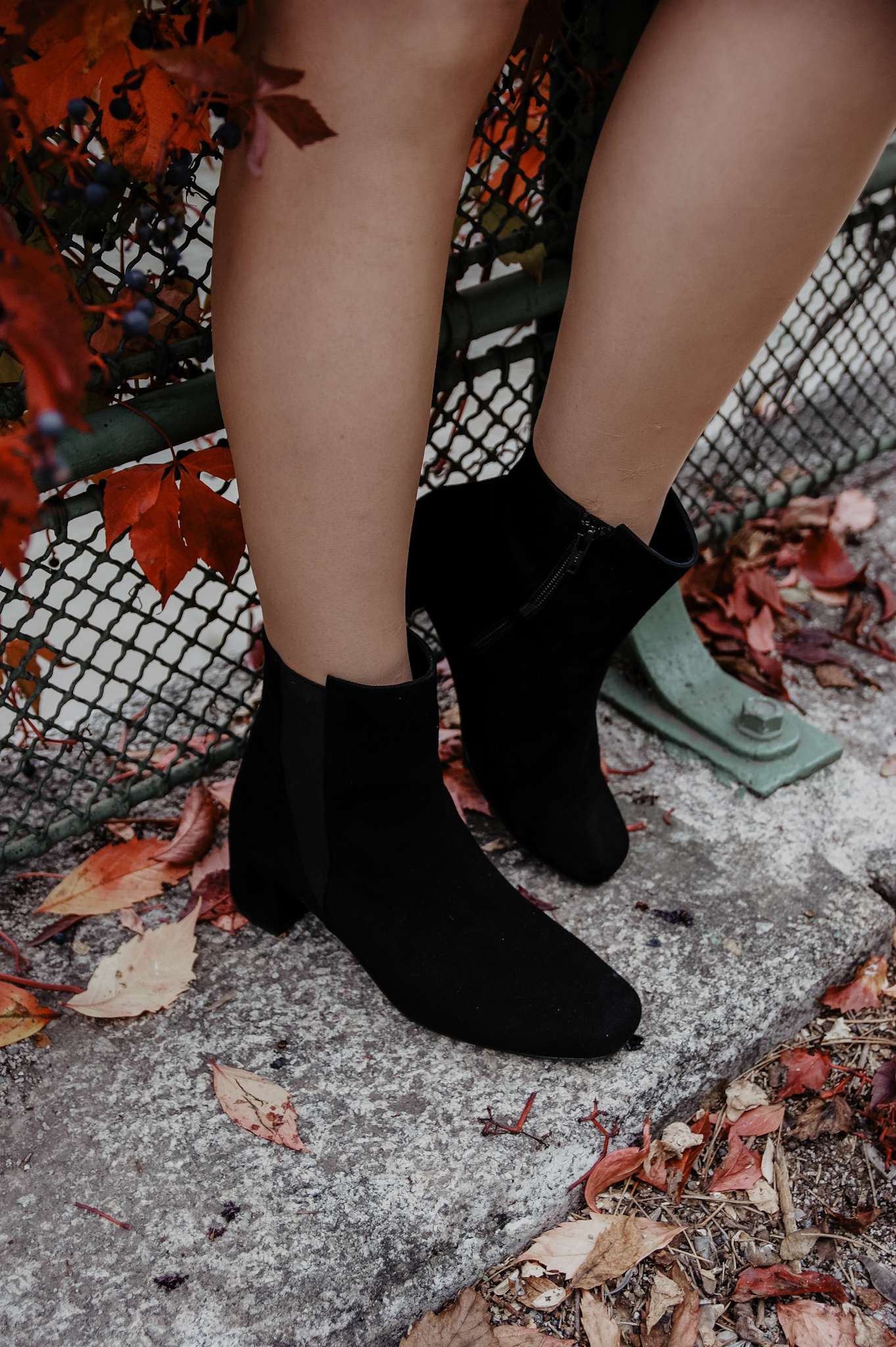 LaShoe Stiefeletten schwarz
