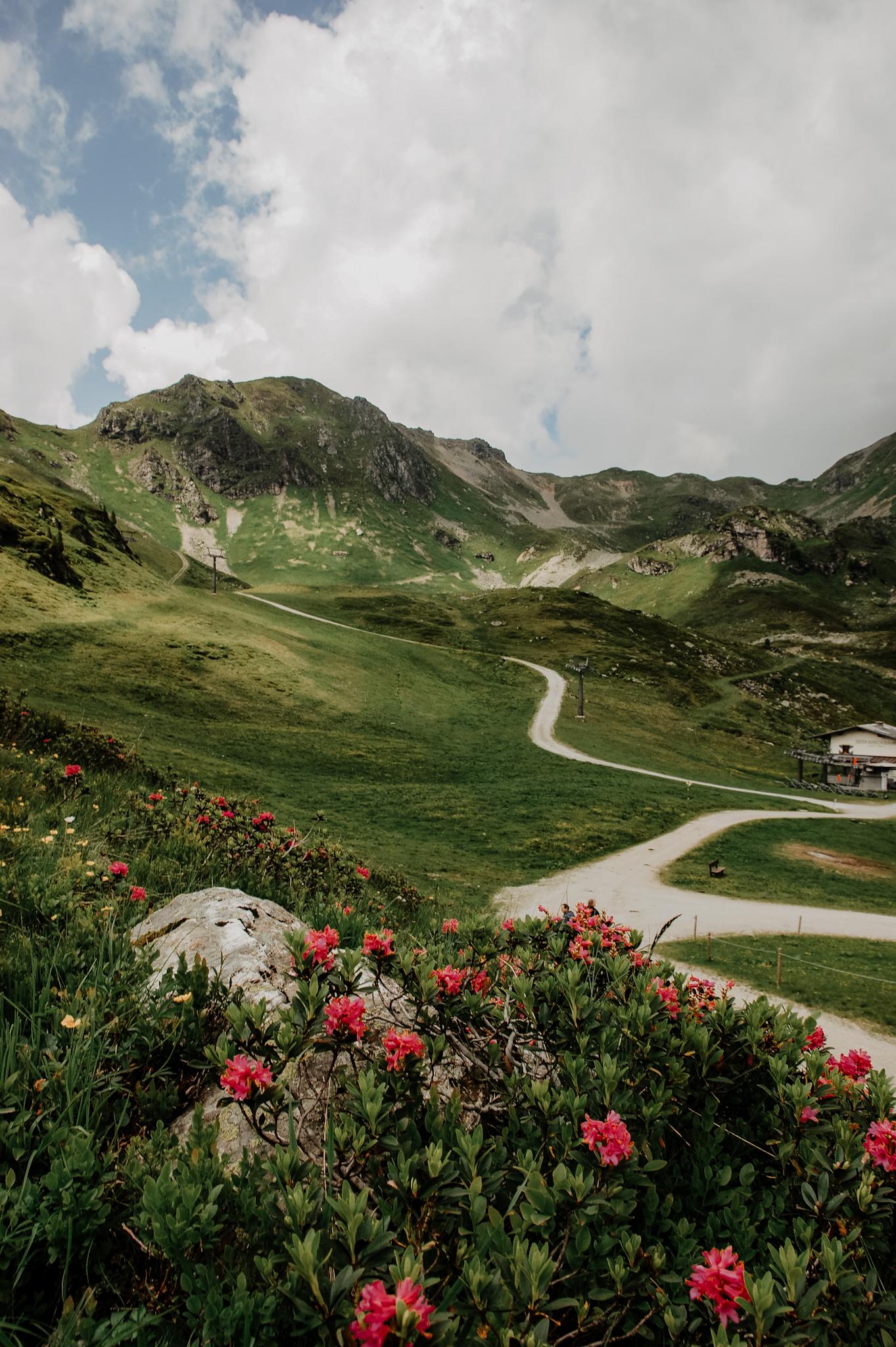 Obertauern, Wanderung, 3 Seen, Wollgras